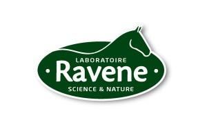 materiel equitation RAVENE