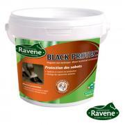 Black Protec RAVENE